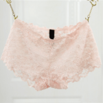 Boyshort Panties Smooth Lace Low Cut